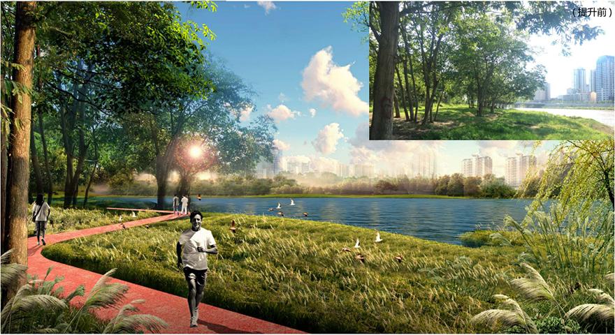 06景观工程改造效果图1